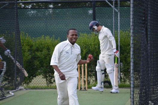 Cricket - 0001