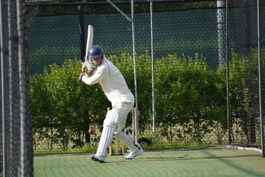 Cricket - 0002