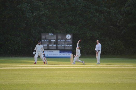 Cricket - 0004