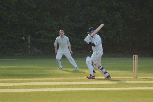 Cricket - 0006