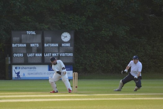 Cricket - 0008
