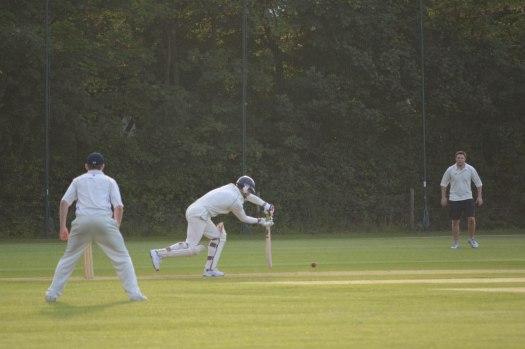 Cricket - 0009