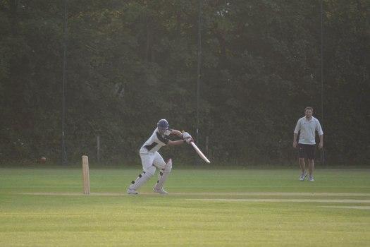 Cricket - 0013